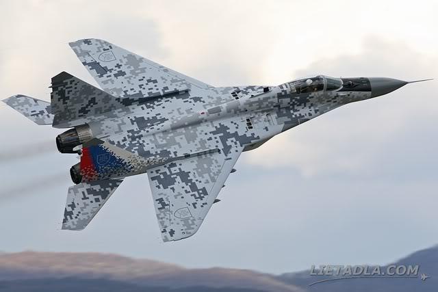 MiG-29-Slovak-Digital-Camouflage.jpg