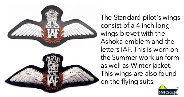 4 Different IAF Pilot's Badge (Wings) You Must See
